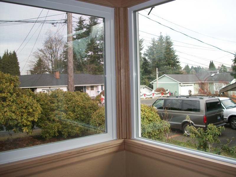 Vinyl windows dupont wa vinyl replacement windows dupont for Best vinyl replacement windows