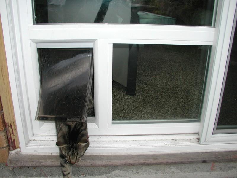 residential-windows-fircrest-wa & House Windows Fircrest WA | Home Window Replacement Fircrest ... Pezcame.Com
